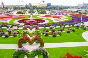 o-DUBAI-MIRACLE-GARDEN-facebook